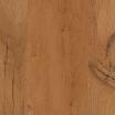 D038 Avignon Oak