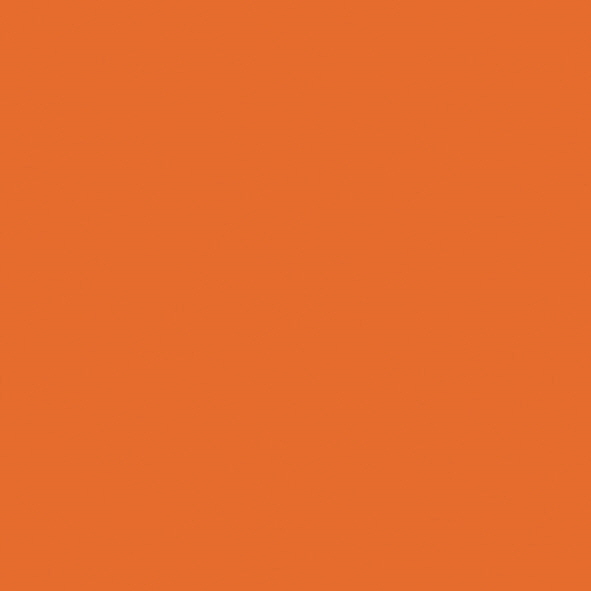 S027_Orange